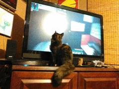 Cleo is loving Minecraft.